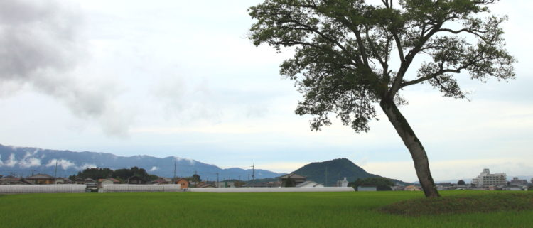 住宅のプランニング方法【実務編】